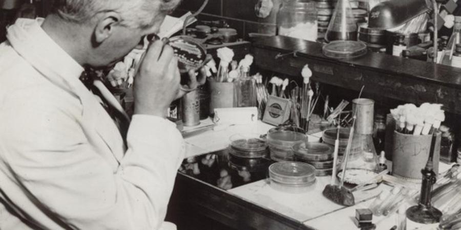 Antibiotika Entdeckung