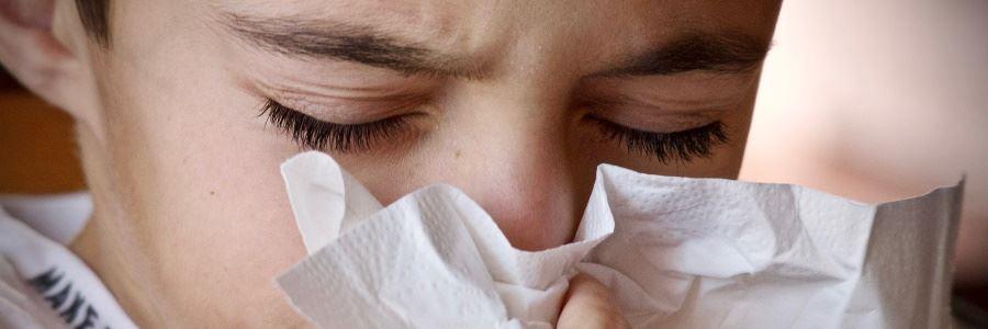 Die Grippe (Influenza) ist momentan viel schlimmer als das Coronavirus
